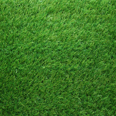 Turf side Artificial Grass 2x5m