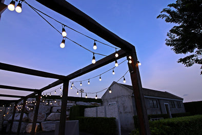 Solar 10 Led Festoon Lights