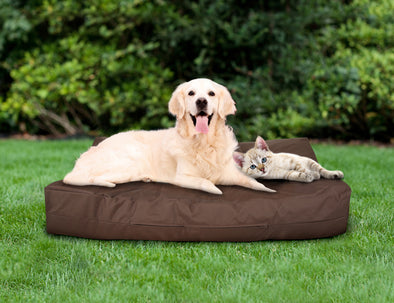 Pets Bean Bag Cover - Chocolate