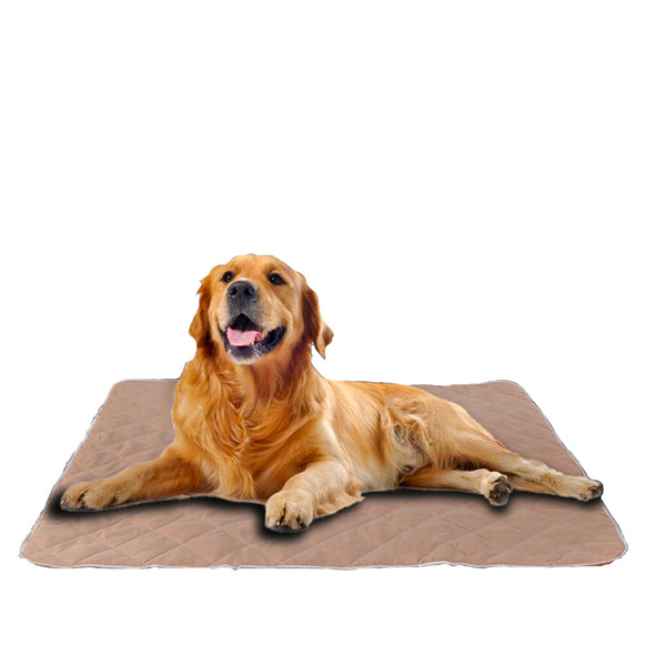 PawZ 2 Pcs 90x90 cm Reusable Waterproof Pet Puppy Toilet Training Pads