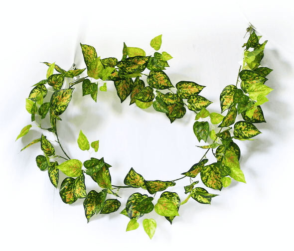 Mixed Yellow and Red Pothos Garland 190cm