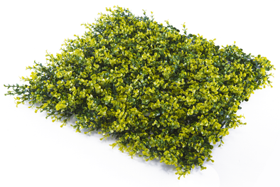 Super Clearance UV Yellow Buxus Mats 50cm x 50cm