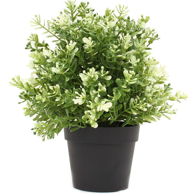 Small Potted Artificial White Jade Plant UV Resistant 20cm