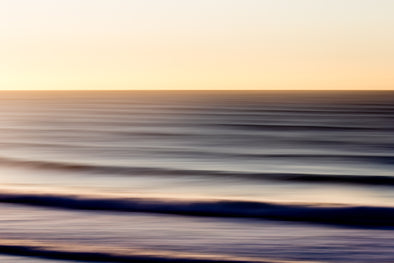 Daily Salt Surf Design Prints - PULSE