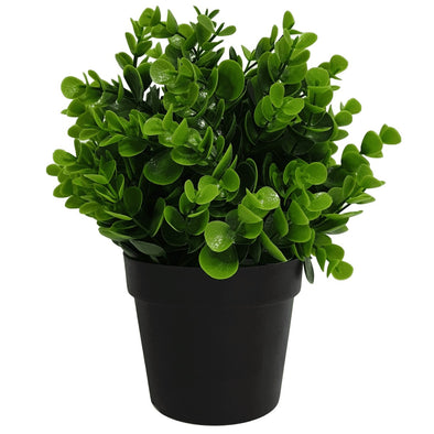 Small Potted Artificial Peperomia Plant UV Resistant 20cm