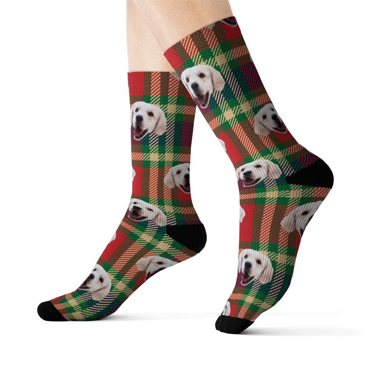 Your Pet On Socks - Tartan