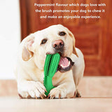 Bzeey Main Image 2-Dog toothbrush Pet dog Chew Toys Brushing Puppy Teething Brush for Doggy Pets Oral Care Stick Bite Toy for Dog Supplies