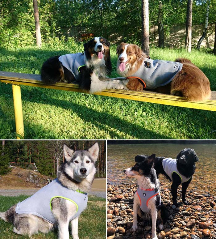 Anti-Heat, Dog Cooling Vest