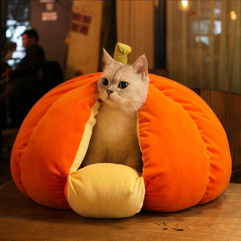Extra Plush Cat Pumpkin Bed