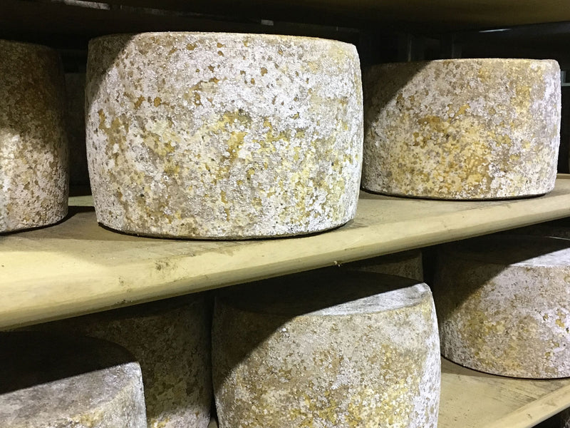 Poaching words: a visit to the home of Lincolnshire Poacher Cheese