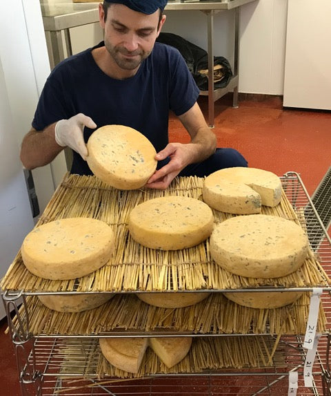 Man holding up a wheel of cheese