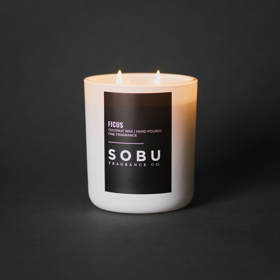 FICUS<br>-DOUBLE WICK-
