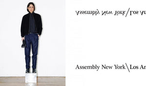 Assembly New York