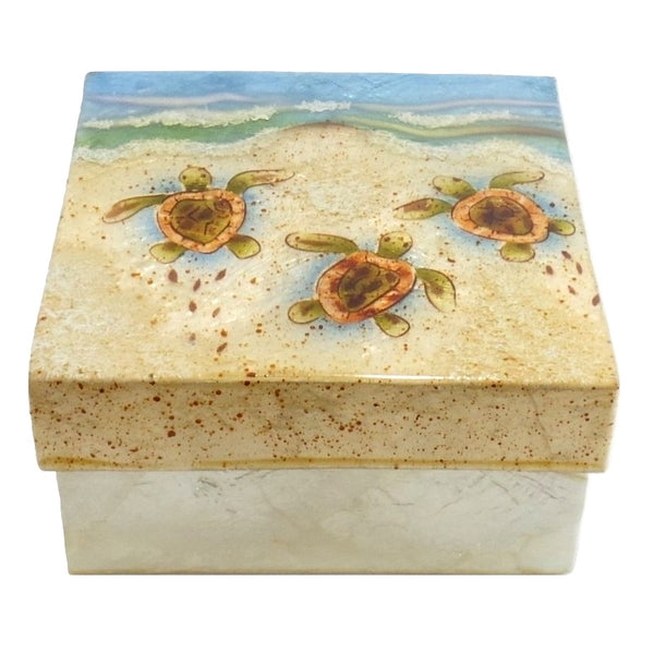 Large Baby Turtle Trinket Box (1237)