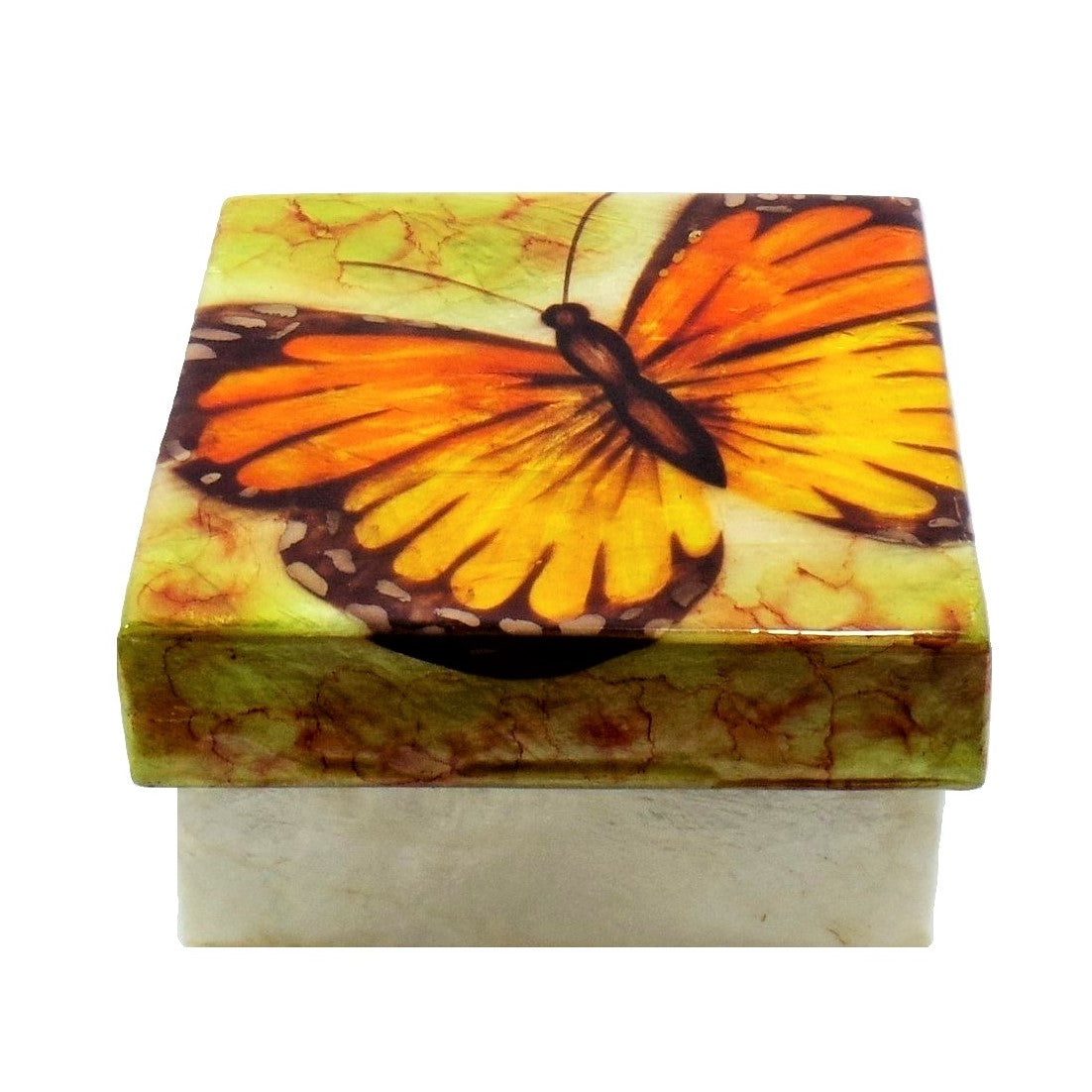 Small Butterfly Trinket Box (1527)