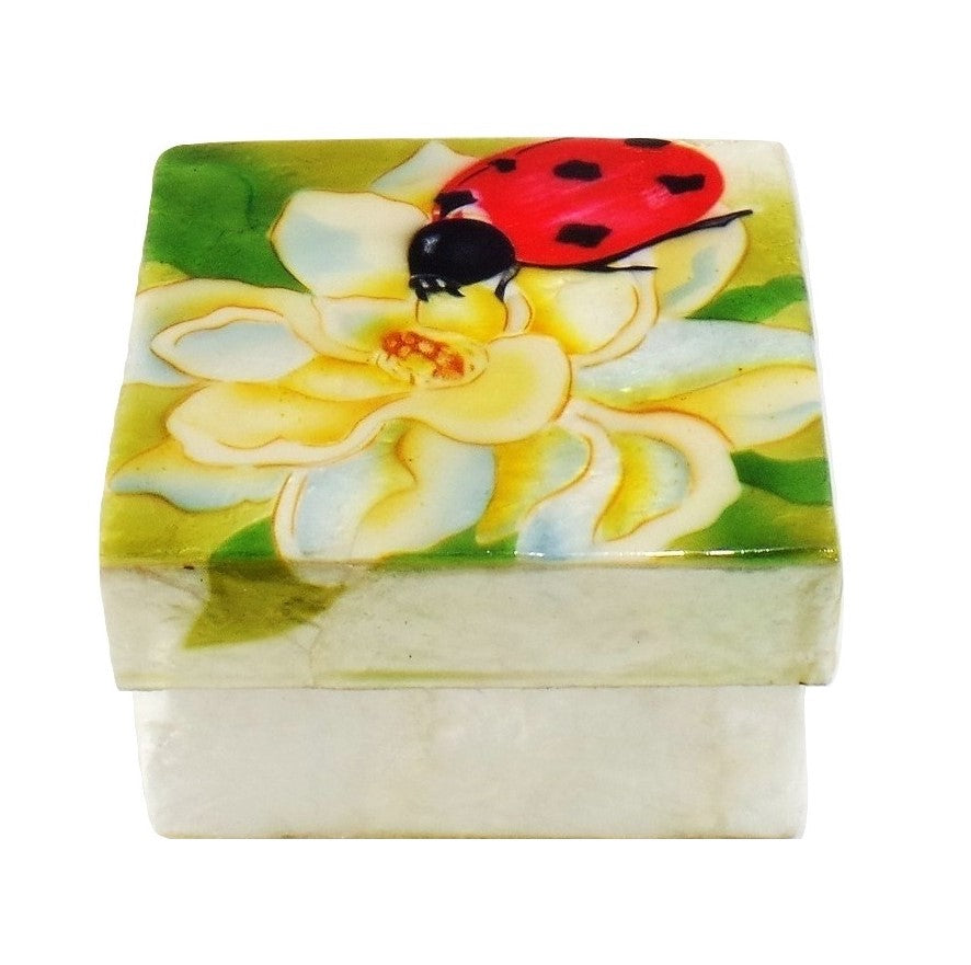Lady Bug Small Trinket Box (1212)