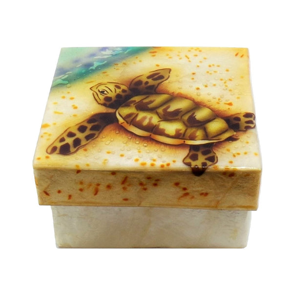 Small Baby Sea Turtle Trinket Box (1539)