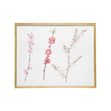 Remastered 19th C. Chinese Flowers