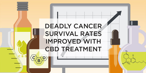 CBD AND THE RELIEF FOR CANCER TREATMENTS