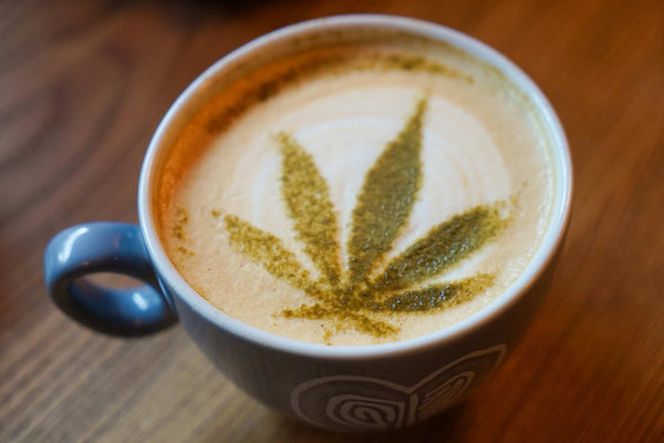 PEPPERMINT CBD LATTE
