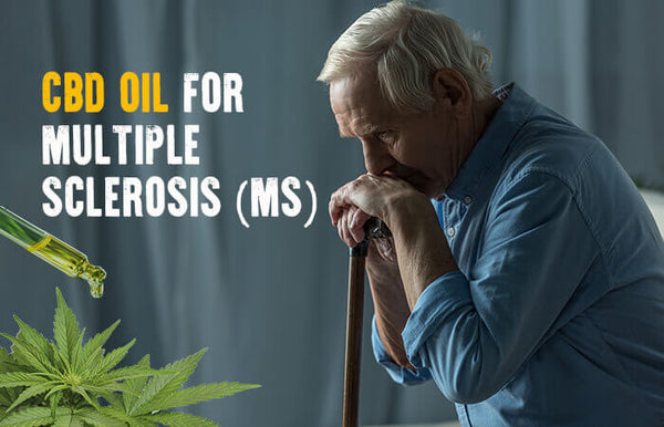 CBD AND ITS EFFECTS AND TREATMENTS ON MS