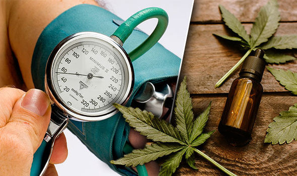 High blood pressure - how CBD oil maybe able lower hypertension risk?