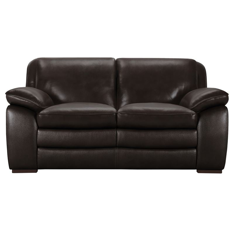 Zanna Contemporary Loveseat in Genuine Dark Brown Leather with Brown Wood Legs