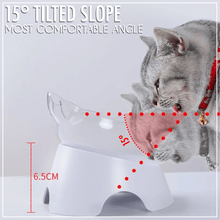 Load image into Gallery viewer, Anti-Vomiting Elevated Cat Bowl