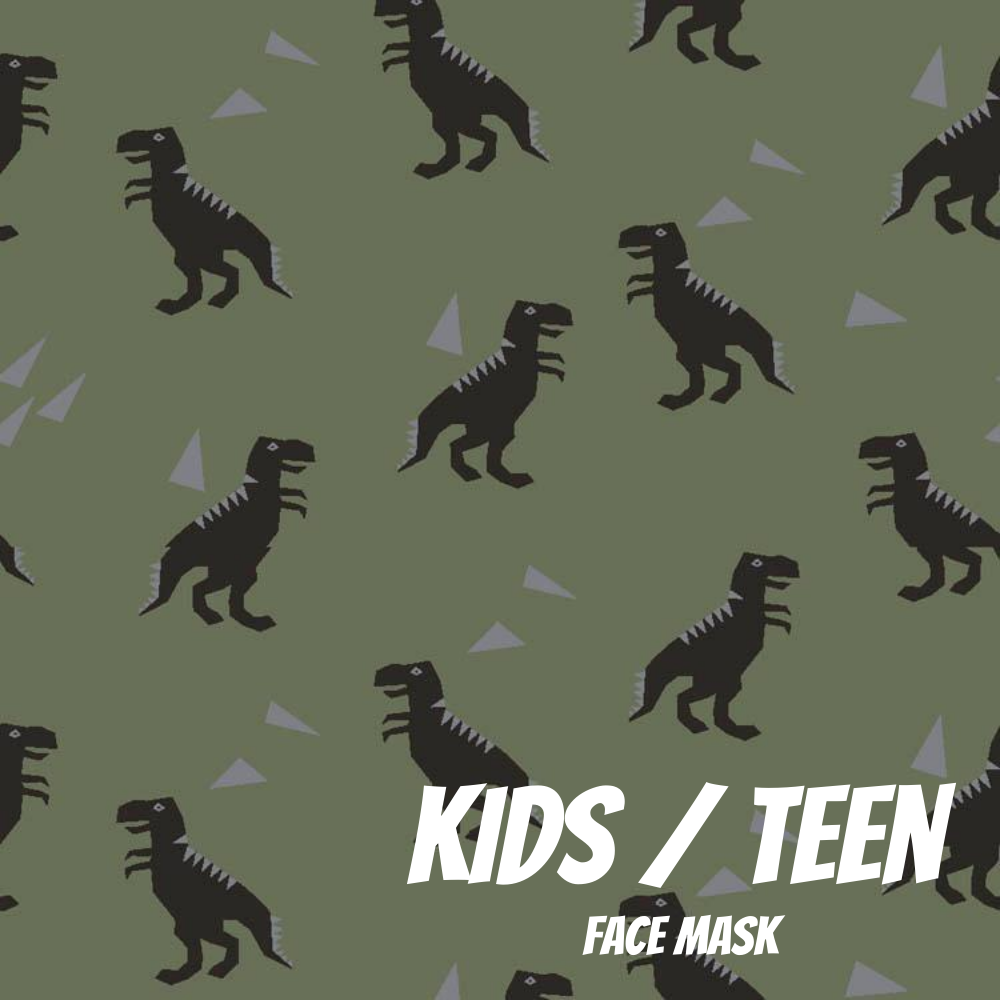Dinos Youth Sized Printed Masks