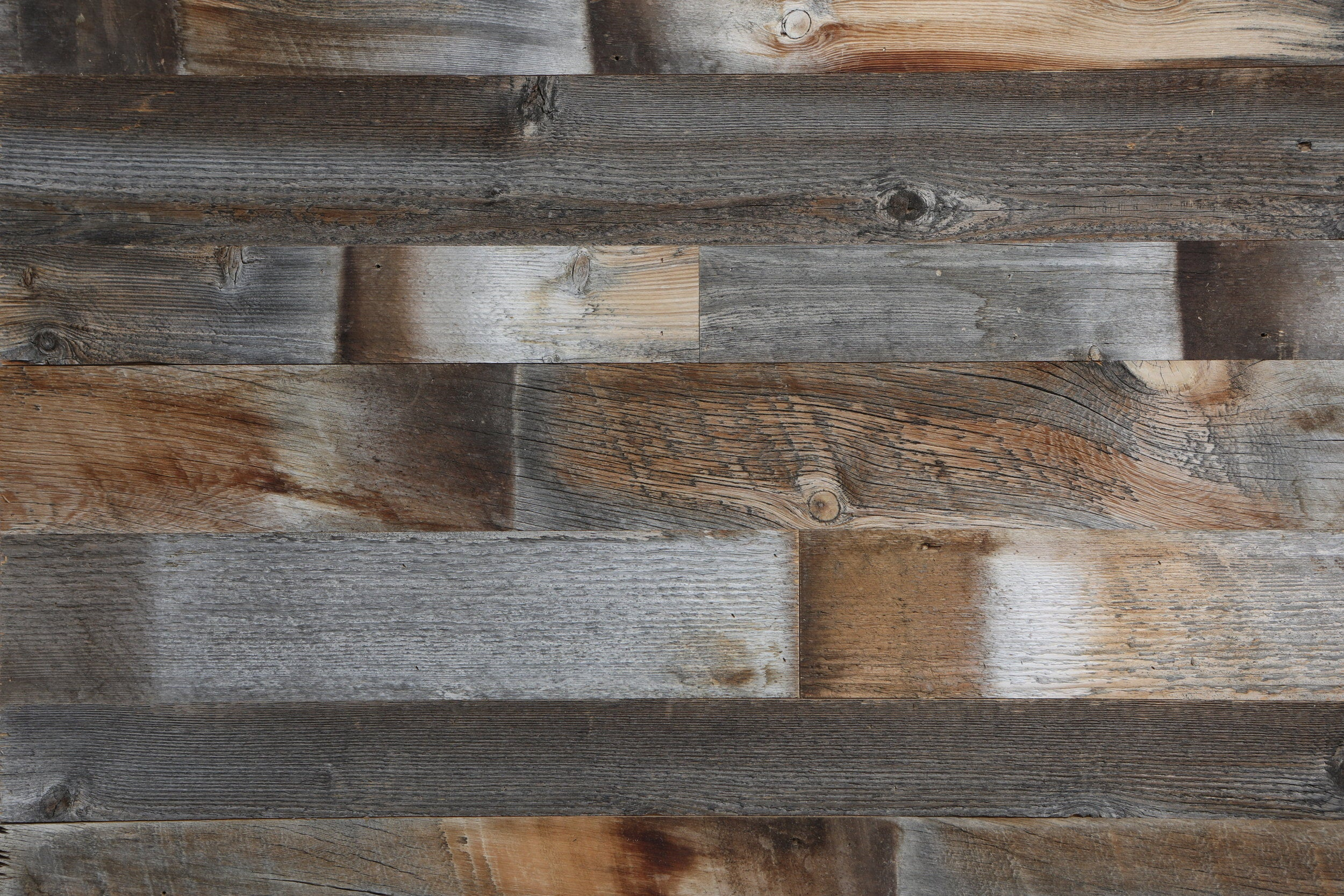 GRAY WOLF - ross alan reclaimed lumber
