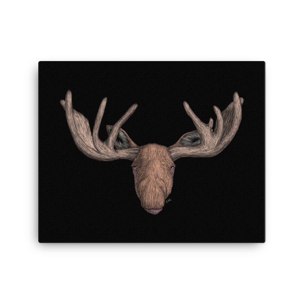 Moose Art Prints