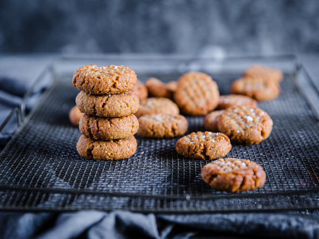 Sea Salt Nut Butter Cookies (Low Carb)