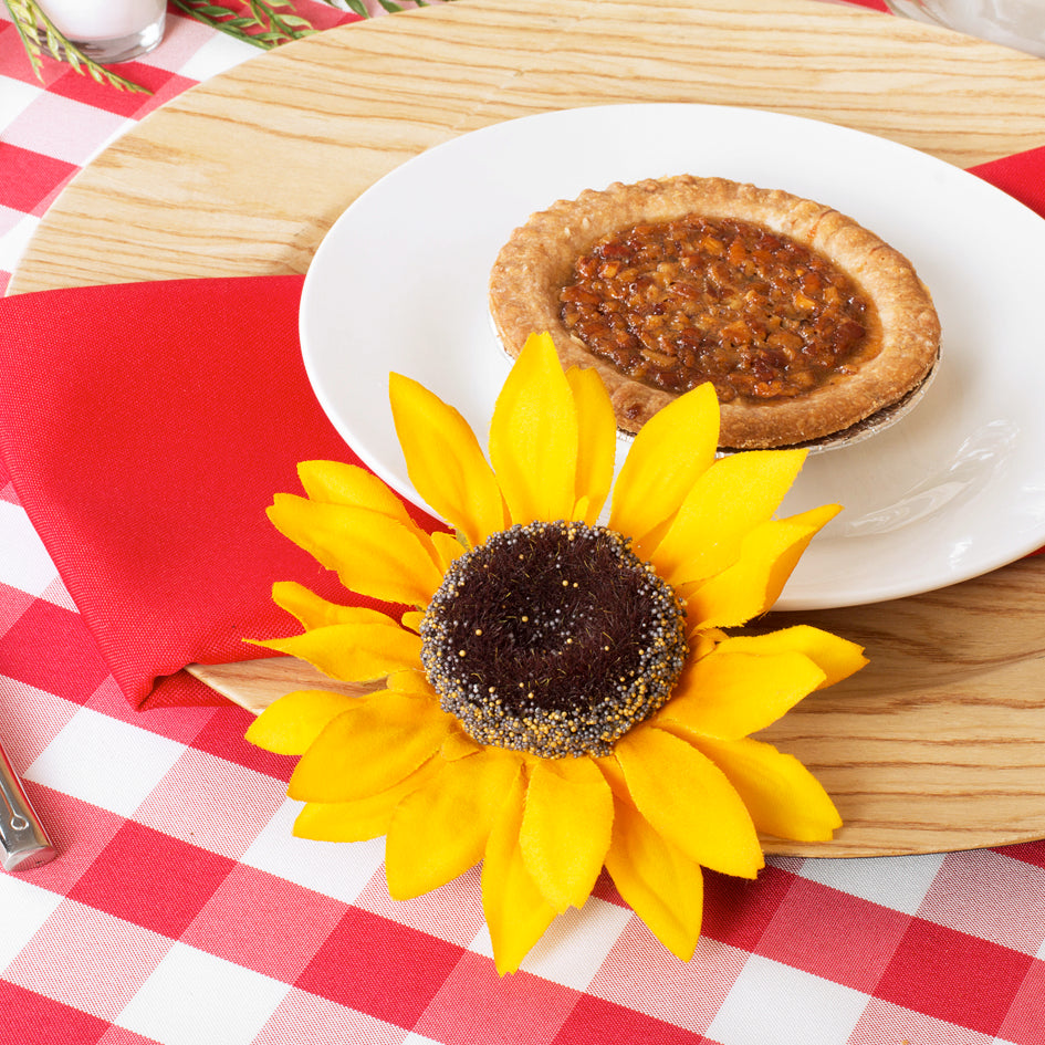 Pie Day Picnic with Red Checkered Tablecloths