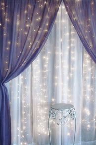Preserving Your Event: Photo Booth Fun sheer voile backdrop