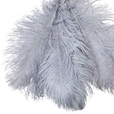 "Ostrich Feathers 16""-18"" (10 pcs) - Dusty Blue"