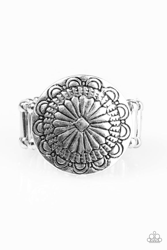 Seasonal Spinster - Silver Paparazzi Ring - Carolina Bling Boss