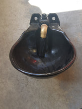 Load image into Gallery viewer, Cast Iron Drinking bowl