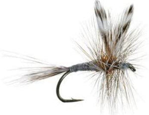 Fly Fishing Flies for Trout - Adams Dry Fly Pattern - Hand Tied Size 12, 14, 16, 18 - Famous Attractor Pattern (20)