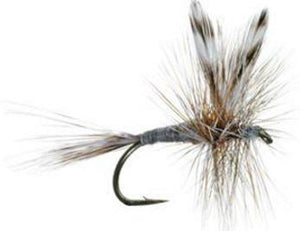 Fly Fishing Flies for Trout - ADAMS DRY FLY PATTERN - One Dozen Size 18 - Feeder Creek