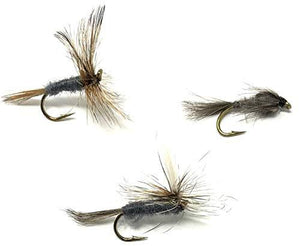 Adams Fly Assortment - Two Dozen Flies in Adams, Adams Parachute, and Adams Nymph - Sizes 12,14,16,18 (2 of Each Size)