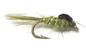Feeder Creek Flies- 16 Popular Nymphs for Trout and Freshwater Fish - 8 Nymph Patterns Sizes 12-18 - Feeder Creek