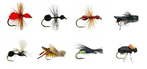 Fly Fishing Flies  ANTS, HOPPERS, AND BEETLES - 16 Total Flies in 8 Patterns - Sizes 14,16 - Feeder Creek