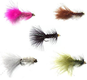 Fly Fishing Assortment - Bead Head Wooly Bugger - 36 Flies - 5 Color Variety - Feeder Creek