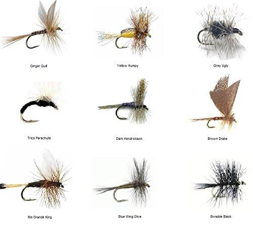 Feeder Creek Fly Fishing Flies Assortment - 36 TROUT CRUSHING Dry Mayflies in 18 Patterns - Feeder Creek