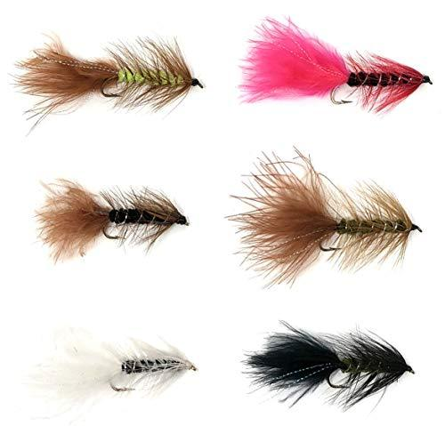 Wooly Bugger Mega Assortment - 48 Flies - 6 Pattern Multi Color Variety Sizes 6-12