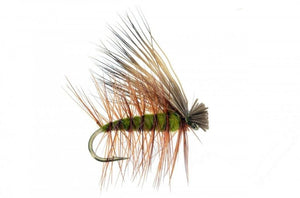 Feeder Creek Fly Fishing Trout Flies - 12 Elk Hair Caddis Olive 4 Size Assortment 12,14,16,18 - Feeder Creek