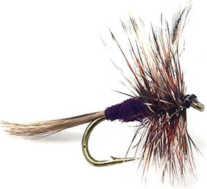Fly Fishing Flies for Trout - ADAMS DRY FLY - Hand Tied Size 12 with Purple Body - Feeder Creek