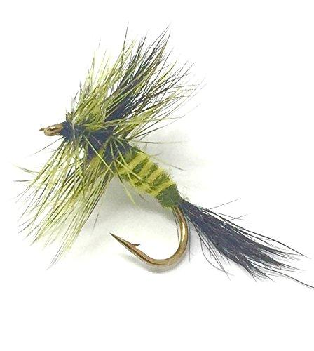 Feeder Creek Fly Fishing Trout Flies - GREEN DRAKE MAYFLY- 12 Flies - 3 Size Assortment 14,16,18 - Feeder Creek