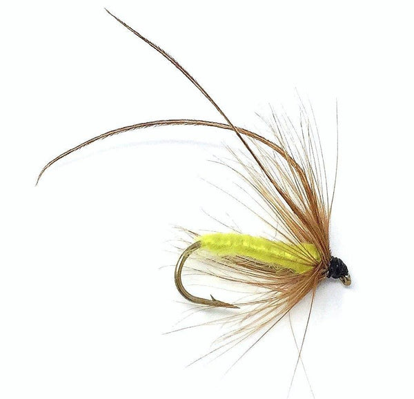 Feeder Creek Fly Fishing Trout Flies - Caddis Mayfly Yellow Wet Fly Soft Hackle -Three Sizes 14,16,18 - Feeder Creek