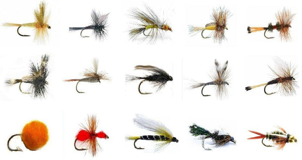 Fly Fishing Lures Set - Wet and Dry Variety for Trout and Freshwater Fish - 15 Patterns - 30 Flies - Feeder Creek